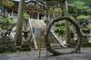 玉置神社,茅の輪(FZ1000,P1000348_F4_9.12mm)2014yaotomi_.jpg
