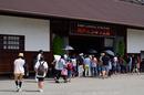 神戸どうぶつ王国,夏(P7210029,50mm,OMD,EM1)2014yaotomi_s.jpg