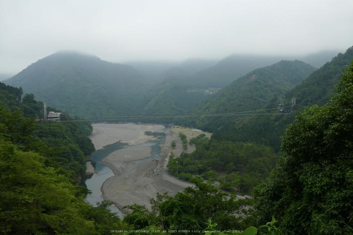 谷瀬の吊橋,初夏(FZ1000,P1000164_F4_10.6mm)2014yaotomi_.jpg