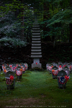 金剛輪寺,あじさい(DSCF6747,F3.6,XT1)2014yaotomi_.jpg