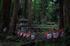 金剛輪寺,あじさい(DSCF6807,F2.8,XT1,FULL)2014yaotomi_.jpg