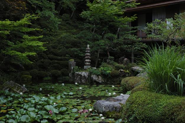 金剛輪寺,DP2quattro(SDIM0318,F4)2014yaotomi_.jpg
