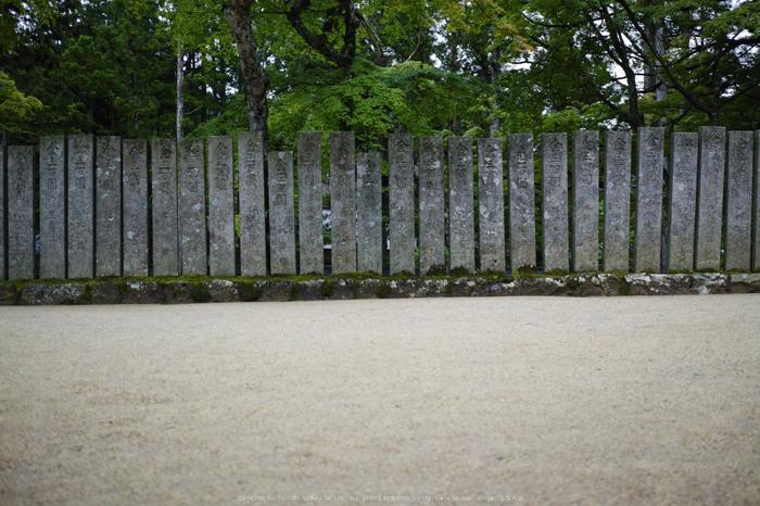 高野山,6月(SDIM0143,F2.8)2014yaotomi_.jpg
