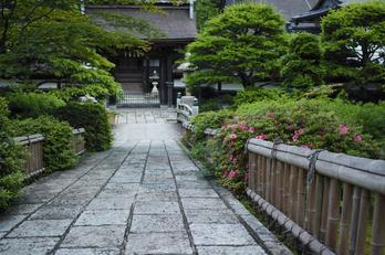 高野山,6月(SDIM0213,F2.8)2014yaotomi_.jpg