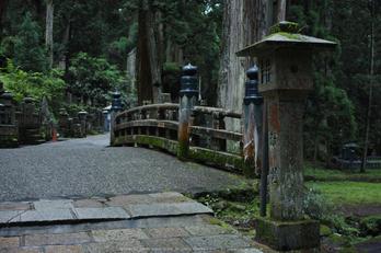 高野山,6月(SDIM0221,F2.8)2014yaotomi_.jpg
