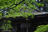 高野山.DP2,Quattro(SDIM0115,3.5)2014yaotomi_.jpg