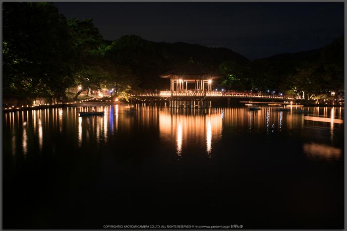 なら燈花会(DSC_1395,30.0-秒-(f---7.1),D810)2014yaotomi_Top.jpg