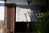 月うさぎ,花鳥風月(IMG_4268,135mm,iso100,6D)2014yaotomi_.jpg