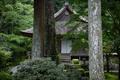 三千院,シュウカイドウ(DSC_0178,85mm,F2,FULL)2014yaotomi_.jpg