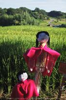 明日香,稲渕,案山子ロード(IMGP0052,8.5mm,F1.9,QS1)2014yaotomi_.jpg