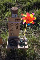 明日香,稲渕,案山子ロード(IMGP0063(RAW),8.5mm,F1.9,QS1)2014yaotomi_.jpg