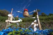 明日香,稲渕,案山子ロード(IMGP0130(RAW),3.8mm,F5.6,QS1)2014yaotomi_.jpg