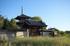 法起寺,コスモス(IMGP0393,30mm,F1.8,FULL)2014yaotomi_.jpg