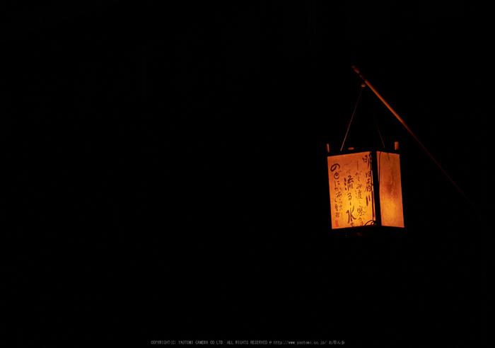 飛鳥光の回廊(DSCF7943,88.2mm,F5.6,iso800,XT1)2014yaotomi_.jpg