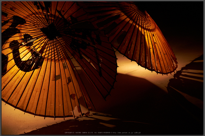 飛鳥光の回廊(DSCF7947,Top)2014yaotomi_.jpg