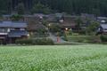 京都美山,かやぶきの里,そば(IMGP0839,FULL)2014yaotomi_.jpg