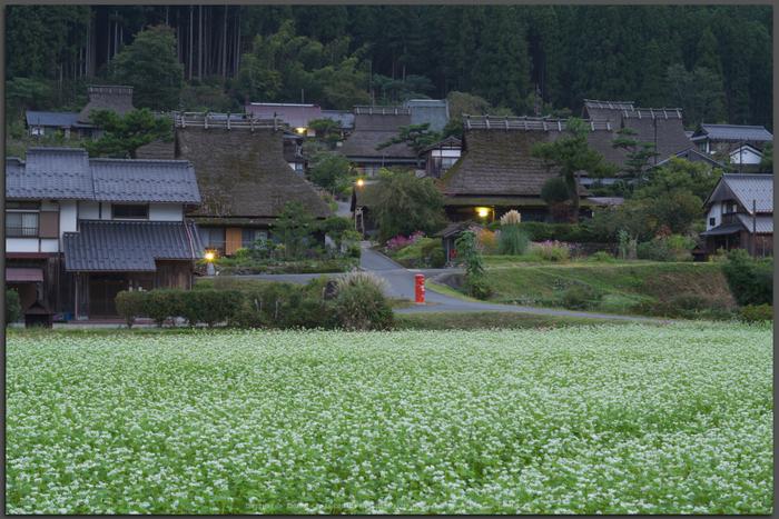 京都美山,かやぶきの里,そば(IMGP0839,Top)2014yaotomi_.jpg