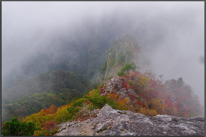大台ヶ原,紅葉(2)(PA150132,Top)2014yaotomi_.jpg