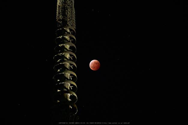 皆既月食,奈良,興福寺(P1040798,100mm,GX7)2014yaotomi_.jpg