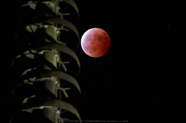 皆既月食,奈良,興福寺(P1040802,300mm,GX7)2014yaotomi_.jpg