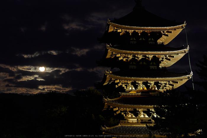 皆既月食,奈良,興福寺(PA080305,45mm,EM1)2014yaotomi_.jpg