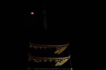 皆既月食,奈良,興福寺(PA080347,45mm,EM1)2014yaotomi_.jpg