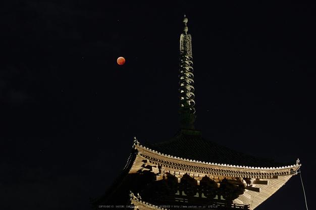 皆既月食,奈良,興福寺(PA080398,45mm,EM1)2014yaotomi_.jpg
