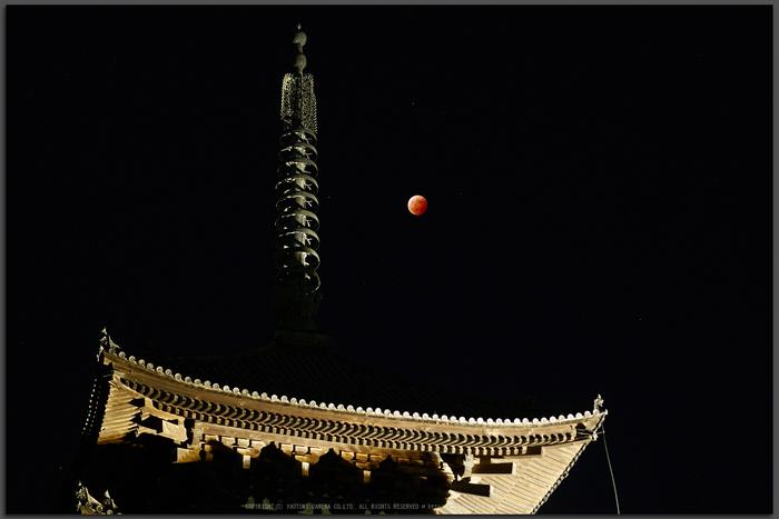 皆既月食,奈良,興福寺(PA080404,45mm,Top)2014yaotomi_.jpg