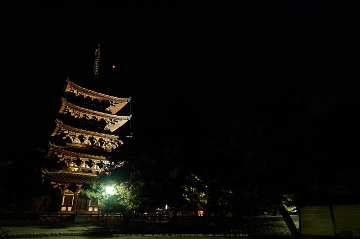 皆既月食,奈良,興福寺(PA080409,12mm,EM1)2014yaotomi_.jpg