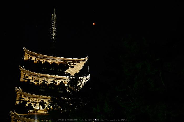 皆既月食,奈良,興福寺(PA080415,25mm,EM1)2014yaotomi_.jpg