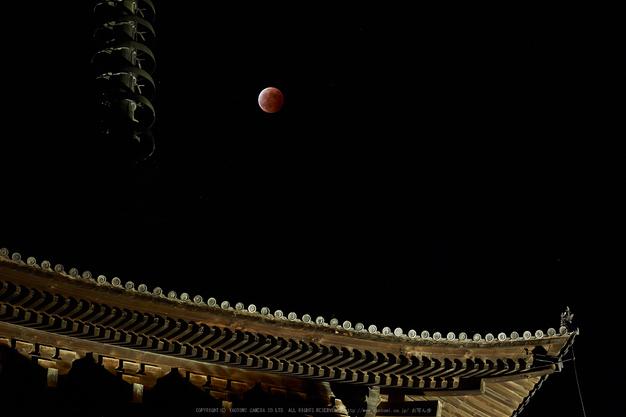 皆既月食,奈良,興福寺(PA080424,75mm,EM1)2014yaotomi_.jpg