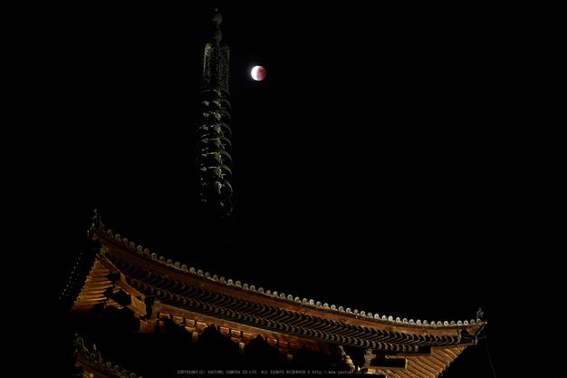 皆既月食,奈良,興福寺(PA080431,45mm,EM1)2014yaotomi_.jpg