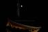 皆既月食,奈良,興福寺(PA080431,FULL)2014yaotomi_.jpg