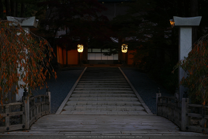 高野山,紅葉(P1000134,F5.6,34mm,LX100)2014yaotomi.jpg