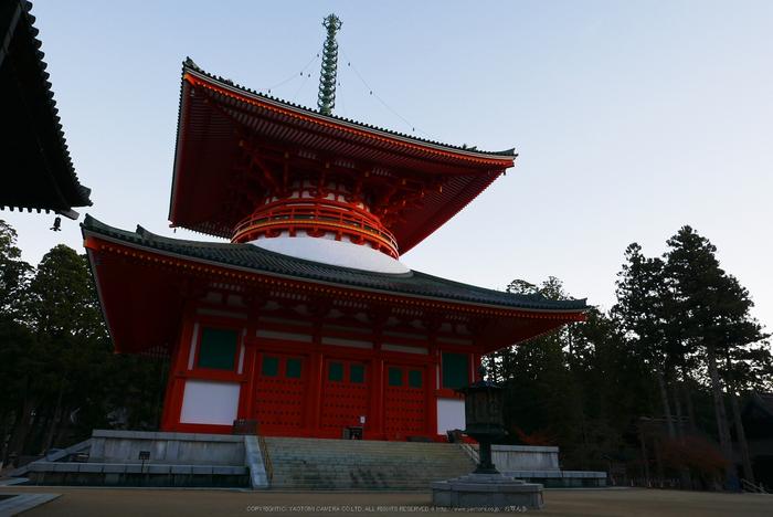 高野山,紅葉(P1000170,F6.3,10.9mm,LX100)2014yaotomi.jpg