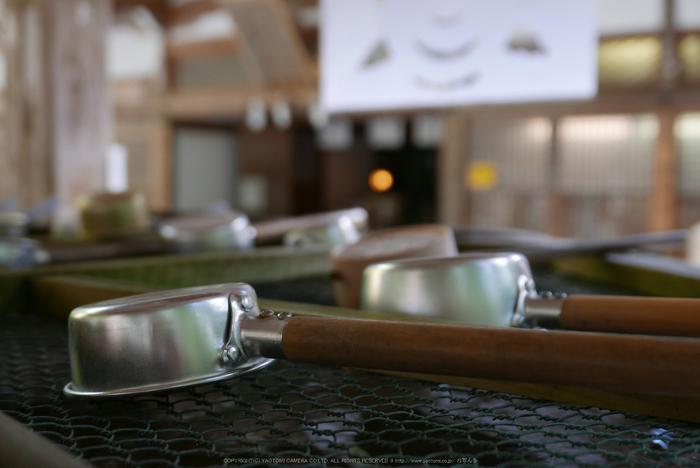 高野山,紅葉(P1000267,F2.6,21.3mm,LX100)2014yaotomi.jpg