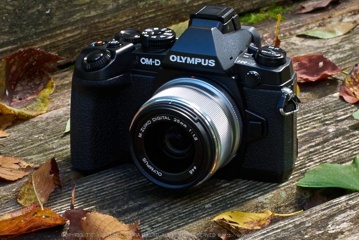 OLYMPUS,OMD,EM1_2014yaotomi_25mm.jpg