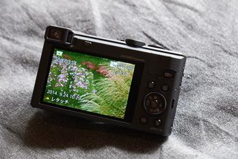 Panasonic,TZ60(DSCF8063,52.4mm,F5.6)2014yaotomi_.jpg