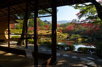 依水園,紅葉(PK3_0591,F9,16mm,K-3)2014yaotomi_.jpg