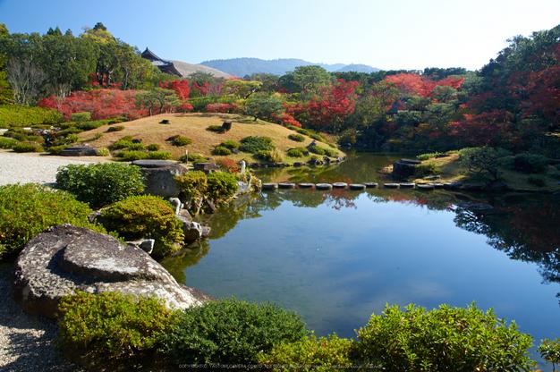 依水園,紅葉(PK3_0729,F10,16mm,K3)2014yaotomi_.jpg