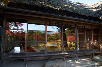 依水園,紅葉(PK3_0748,F6.3,16mm,K-3)2014yaotomi_.jpg