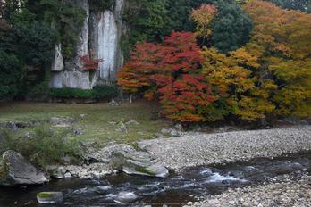 大野寺,紅葉(DSC_0984,F5.6,32mm,D750)2014yaotomi_.jpg