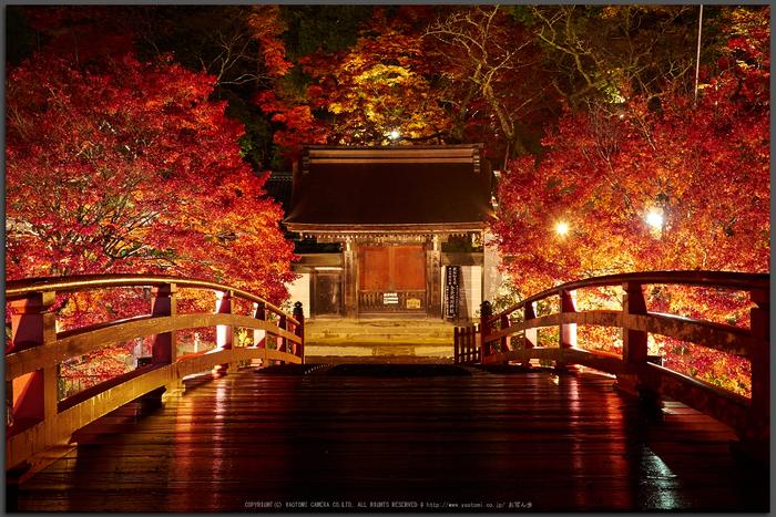 室生寺・紅葉(PB260161,Top)2014yaotomi_.jpg