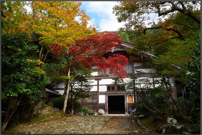 常照皇寺,紅葉(PB050286,Top)2014yaotomi.jpg