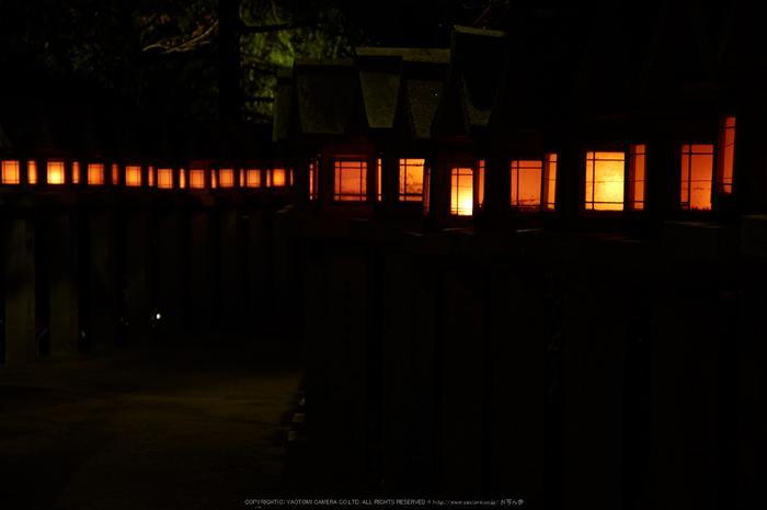 朝護孫子寺,紅葉(PK3_0163,F4.5,53mm,K3)2014yaotomi_.jpg