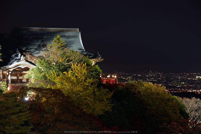 朝護孫子寺,紅葉(PK3_0171,F7.1,85mm,K3)2014yaotomi_.jpg