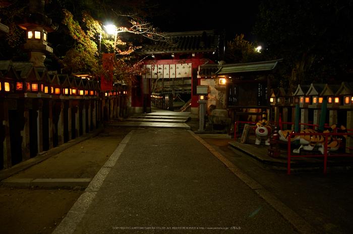 朝護孫子寺,紅葉(PK3_0212,F5,16mm,K3)2014yaotomi_.jpg