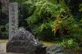 正暦寺,紅葉(DSC_0109,52mm,F3.5,D750)2014yaotomi.jpg
