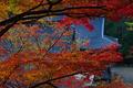 神護寺,紅葉(PB050060,40mm,F6.3,FULL)2014yaotomi.jpg