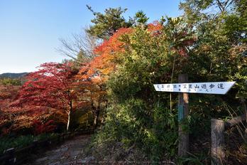 笠置寺,紅葉(DSC_0710,14mm,F8,D750)2014yaotomi.jpg